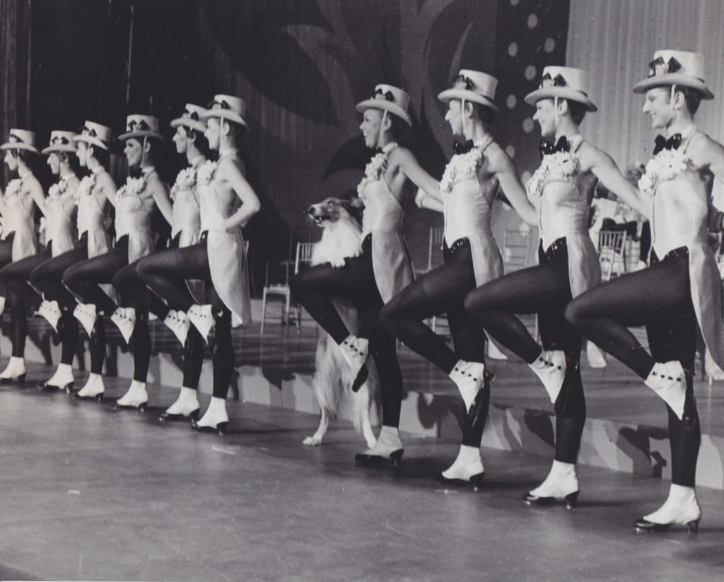 Lassie alongside the famous Rockettes at Radio City Music Hall in 1978