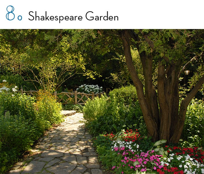 shakespeare-garden-central-park-article