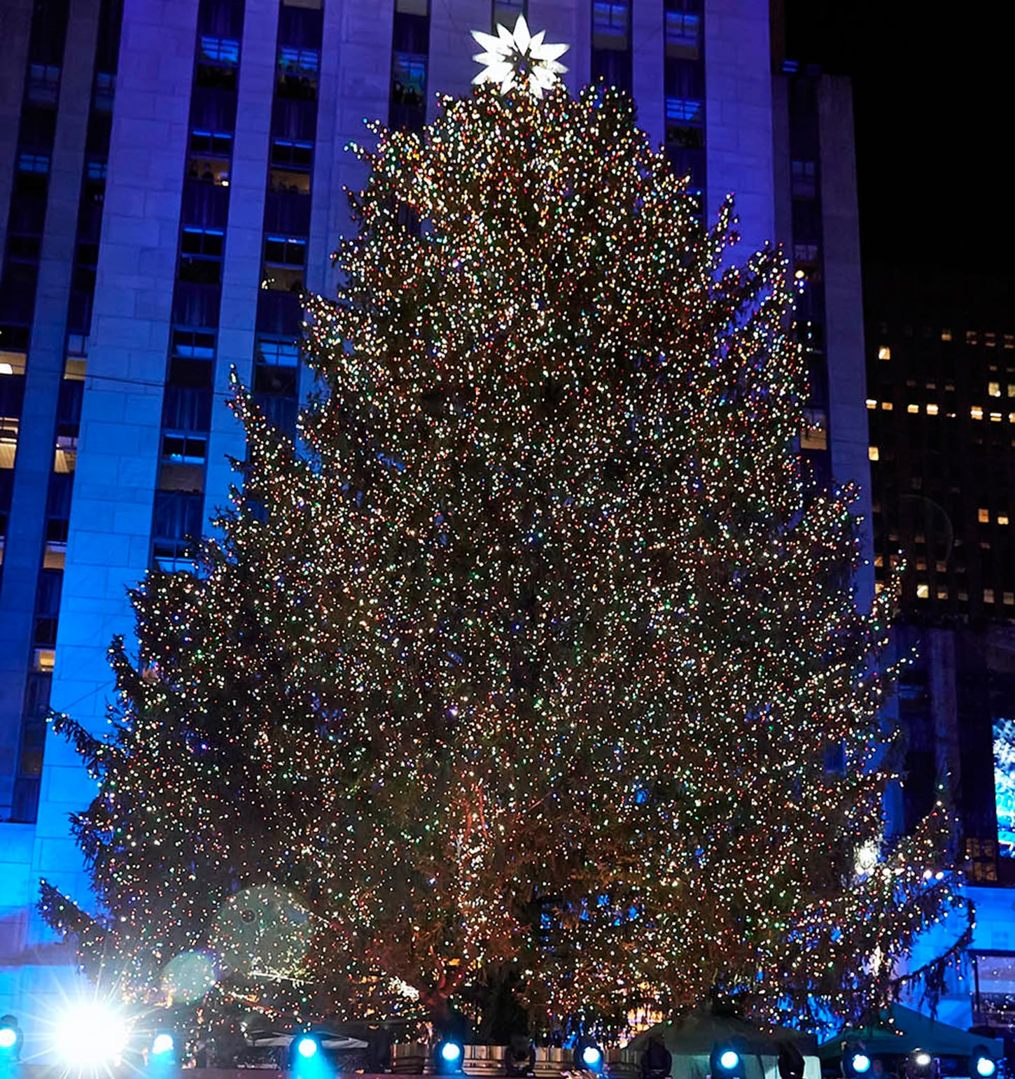 Christmas Tree In Ny: Rockettes' Favorite Christmas Trees To See In New York