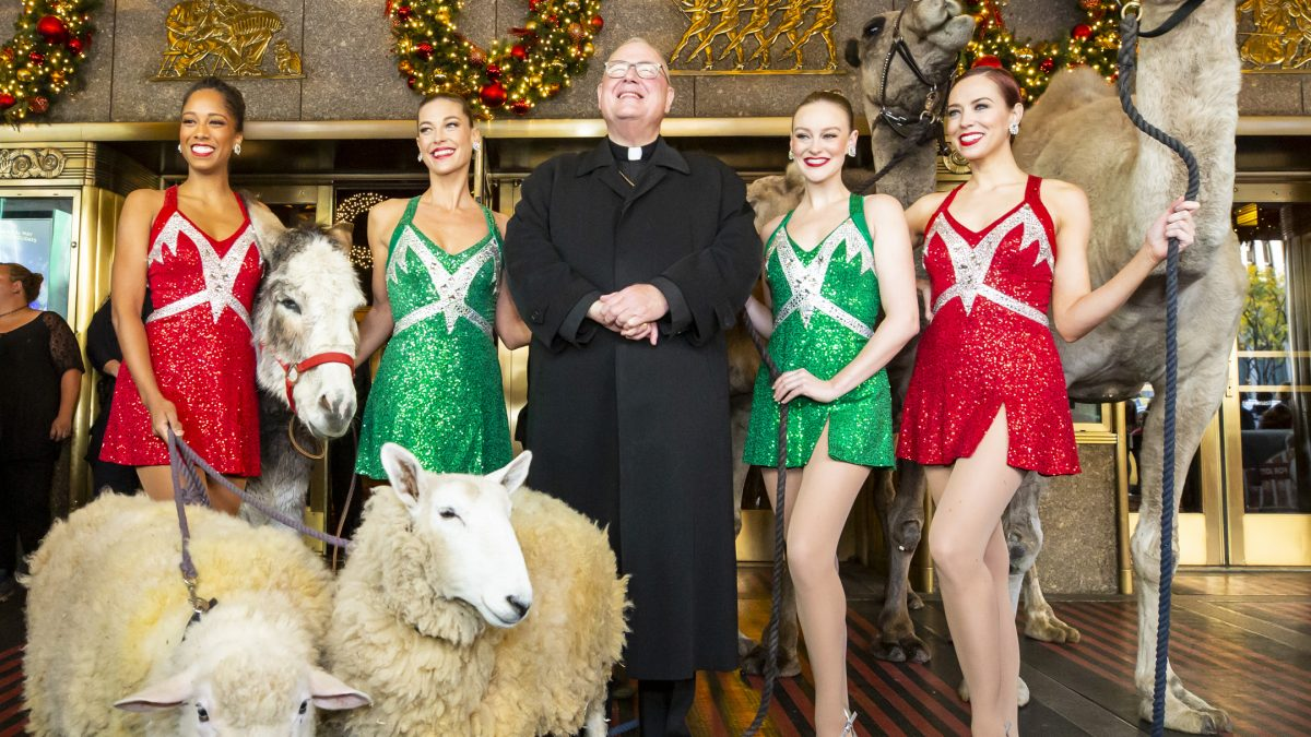 Cardinal Dolan Blesses The Animals in our 'Living Nativity' Scene